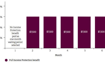 Wealth Protection Case Study 2 – Protect your income